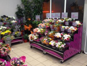 Çiçek Dükkanı